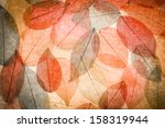 Abstract Autumn Background....