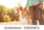 man and central asian shepherd... | Shutterstock . vector #158350871