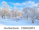 Snowy Landscape By The Narew...