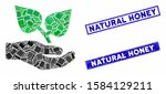 mosaic flora care hand icon and ... | Shutterstock .eps vector #1584129211