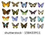 butterfly on white | Shutterstock . vector #158433911