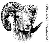 mountain sheep. sketchy  black ...   Shutterstock .eps vector #1584751651