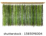 leaves hanging home decoration... | Shutterstock . vector #1585098304
