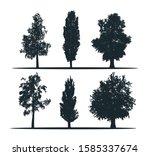 Tree Silhouettes   Birch ...