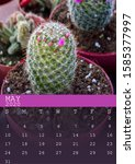 Calendar Of May 2020 With A...