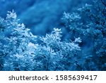 background with fresh leaves on ...   Shutterstock . vector #1585639417