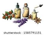 essential oil bottle vector set....   Shutterstock .eps vector #1585791151