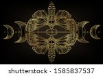 golden moth over sacred... | Shutterstock .eps vector #1585837537