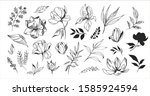 floral set. sketches of flowers ... | Shutterstock .eps vector #1585924594