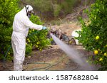 Weed insecticide fumigation....