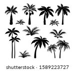 silhouette palm trees. set...   Shutterstock .eps vector #1589223727