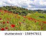 Spring In Tuscany  Landscape...