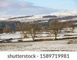Snowy Winter Scene In...