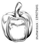 a vintage retro woodcut print...   Shutterstock .eps vector #159075641