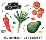 watercolor vegetables set. hand ... | Shutterstock . vector #1591300657