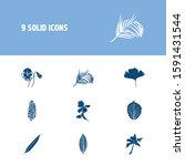 flora icon set and pansy with... | Shutterstock .eps vector #1591431544