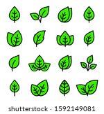 linear eco set of green leaf... | Shutterstock .eps vector #1592149081