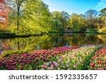 Amazing Nature Landscape  Royal ...