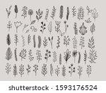 big set of hand drawn vector... | Shutterstock .eps vector #1593176524