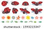 Cartoon Ladybug. Cute Ladybugs...