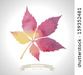 vector watercolor leaf | Shutterstock .eps vector #159352481