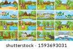 background scenes of animals in ... | Shutterstock .eps vector #1593693031