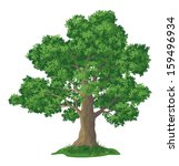 oak tree with leaves and green... | Shutterstock .eps vector #159496934