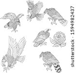 hand drawn eagle set outline... | Shutterstock .eps vector #1594982437