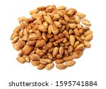 Apricot Kernel Isolated On...