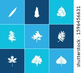 flora icon set and nature with... | Shutterstock .eps vector #1596456631