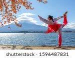 tokyo  japan   november 11 ... | Shutterstock . vector #1596487831