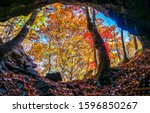Small photo of Forest cave in autumn scene. Autumn forest cave entrance. Cave in autumn forest. Cave entrance in autumn forest