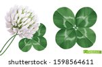 four leaf clover and clover... | Shutterstock .eps vector #1598564611