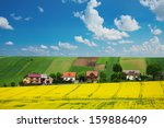 rapeseed field and houses on... | Shutterstock . vector #159886409