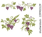 Vector Set  Vine Leaves With...