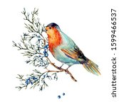Watercolor Woodland Bird With...