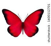 Realistic Red Butterfly...