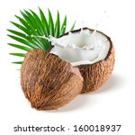 coconuts with milk splash and... | Shutterstock . vector #160018937