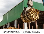 Logging. Log Loader With...