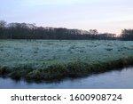 Dutch Stream With Forest Edge...