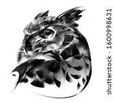 Drawn Portrait Of An Owl Bird...