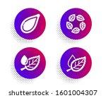 organic tested  pumpkin seed... | Shutterstock . vector #1601004307