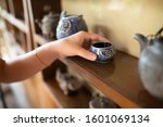 Small photo of Young girl's hand holding teacup on a wooden shelf.Antique Chinese teapot collection.Asian herbal tea leaves drink lifestyle.Healthy living.