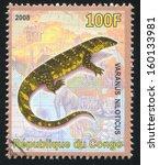 congo   circa 2008  stamp... | Shutterstock . vector #160133981