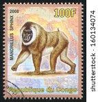 congo   circa 2008  stamp... | Shutterstock . vector #160134074