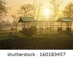 farmland in sunset with herd of ... | Shutterstock . vector #160183457