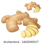 ginger root illustration.... | Shutterstock . vector #1602040417