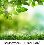 soft defocused spring... | Shutterstock . vector #160213589