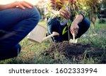 Young Man Gardener  Planting...