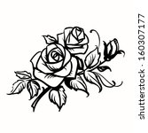 roses. black outline drawing on ... | Shutterstock . vector #160307177